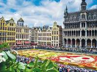 Flower carpet in the city center of Brussels