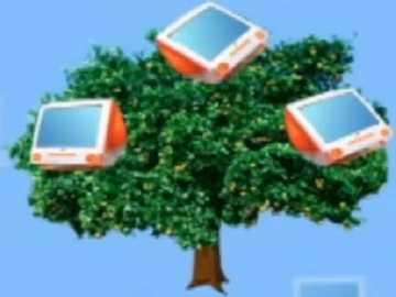 t jak drzewo - lmnopqrstuvwxyzlmnop