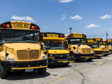 school buses - Alot of buses and my dad drive it to