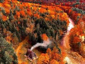 Une oasis de paix au milieu d'une grande forêt - Une oasis de paix au milieu d'une grande forêt