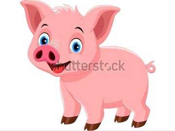 das Schwein - ein Nutztier