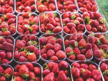 """fraises rouges dans un récipient en plastique transparent - 7h42 - Marche samedi sur mon """"Marché"""" français préféré - La Baule?. Marché, La Baule"""