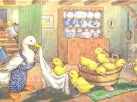 Entenwasser - Pfote mit ihren schönen Entenküken