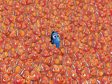 searching - too many orange fish
