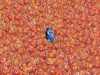 suchen - zu viele Orangenfische