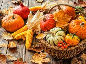 Autumn time is harvest thanksgiving time - Autumn time is harvest thanksgiving time