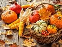 O outono é a época da colheita de ação de graças - O outono é a época da colheita de ação de graças