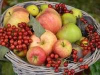 Herfst bedankt voor de oogst