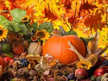 Herbstzeit Danken für die Ernte - Herbstzeit Danken für die Ernte