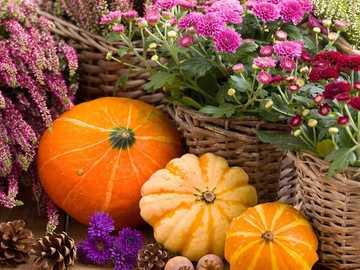 Es wird Herbst im Garten - Es wird Herbst im Garten