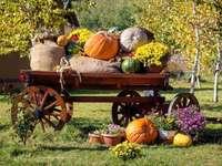 Récolte d'automne dans le jardin - Récolte d'automne dans le jardin
