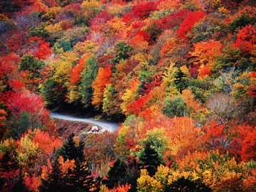 Drive through a beautiful autumn landscape - Drive through a beautiful autumn landscape