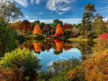 Autumn landscape in Maine USA - Autumn landscape in Maine USA