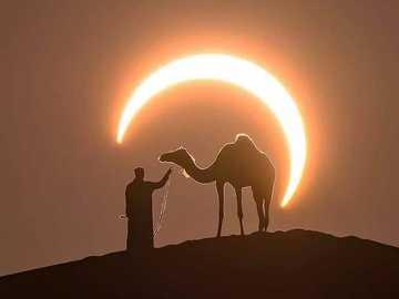 In der Sahara. - Landschaftspuzzle.