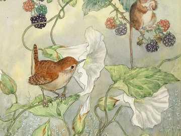 Brombeeren und Blumen - wunderbare Natur