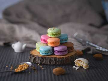 Macarons - assorted-color macaroons on wood slab.