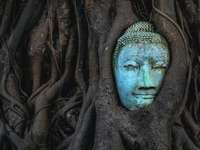 blue and green face mask - Wat Mahathat's Buddha Head is a famous statue that over the decades has been overgrown with the