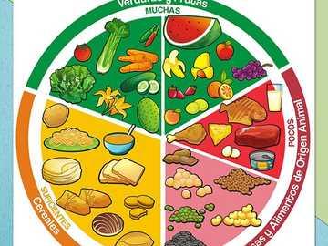 Tányér jó étkezés - Építsd meg a jó étkezés tányérját