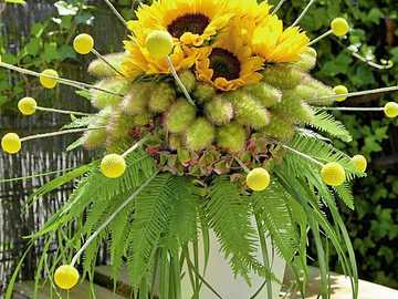 bouquet of sunflowers - m .........................