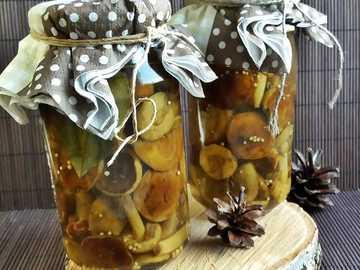 mushrooms in a jar - m .........................