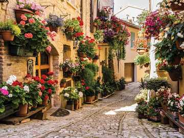 italy- a street full of flowers - m ......................