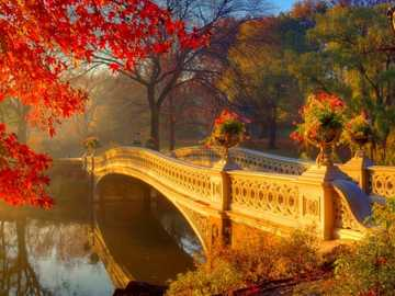 Autumn In The Park - Bridge In Central Park, New York