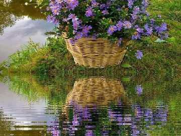 a basket of flowers and its reflection in the water - a basket of flowers and its reflection in the water