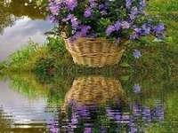 ένα καλάθι με λουλούδια και η αντανάκλασή του στο νερό - ένα καλάθι με λουλούδια και η αντανάκλασή του στο νερό