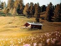 Petite cabane alpine dans les Dolomites