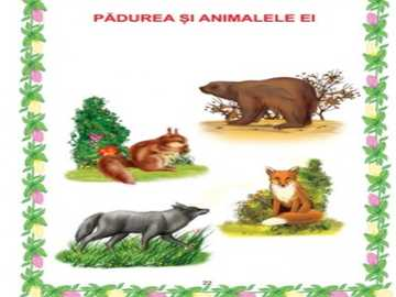 la foresta e i suoi animali - animali selvatici: scoiattolo, lupo, volpe e orso
