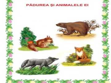 padurea si animalele ei - animalele salbatice: veverita, lupul, vulpea si ursul