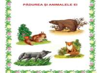 the forest and its animals