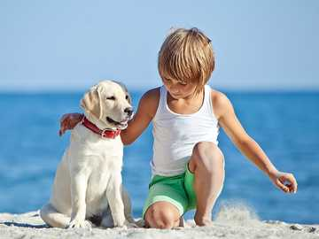 am Strand mit einem Hund - m .....................