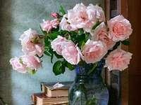 rózsaszínű rózsák