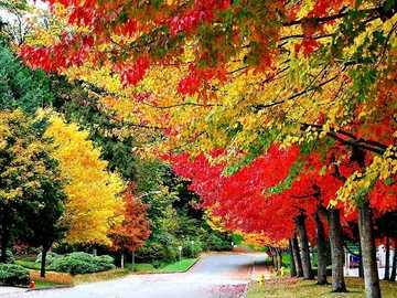 Herbstlandschaft. - Landschaftspuzzle.