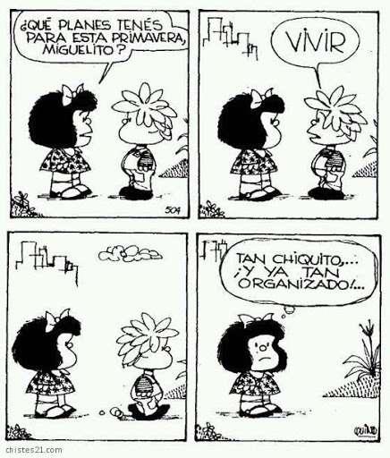 Dziewiąty i mafalda