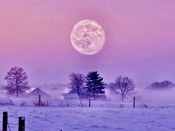 Violetter Himmel mit Vollmond im Winter - Violetter Himmel mit Vollmond im Winter