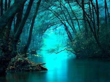 Trees by the water in turquoise - Trees by the water in turquoise