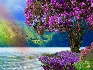 Paysage arc-en-ciel coloré - Paysage arc-en-ciel coloré