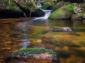 Ruisseau avec gradient d'eau dans la forêt - Ruisseau avec gradient d'eau dans la forêt
