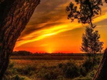 Coucher de soleil à l'horizon - Coucher de soleil à l'horizon