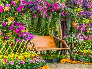 Abundance of flowers on the house with bench to rest - Abundance of flowers on the house with bench to rest