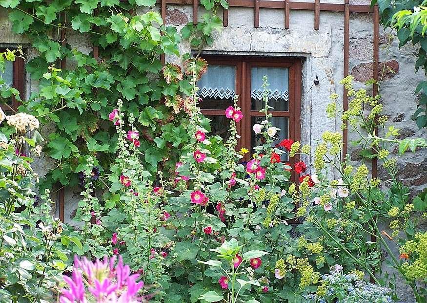 Bauerngarten vor altem Steinhaus