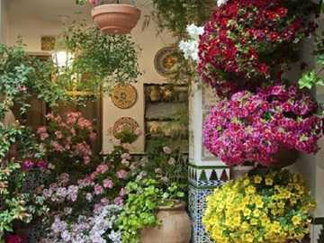 Beautiful flower decoration on the house - Beautiful flower decoration on the house