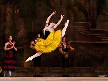 Don Quixote - Don Quijote-balett. Dansare: Adiarys Almeida.