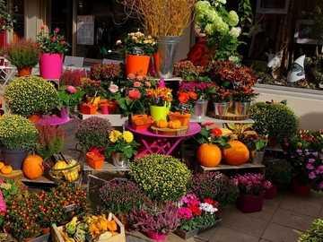 Flower shop with autumn decorations - Flower shop with autumn decorations