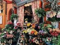 Магазин за цветя в Болоня - Магазин за цветя в Болоня