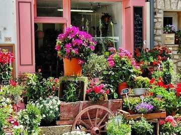 Flower shop in France - Flower shop in France