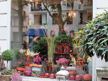 Florería en Hamburgo - Florería en Hamburgo
