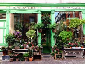 Flower shop in Holland - Flower shop in Holland